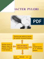 Patologia (HP)