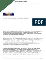 LA GRAN TRANSFORMACION DEL CARBONO EN SILICIO