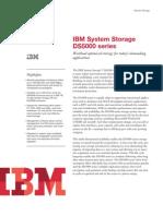 IBM Storage DS5100