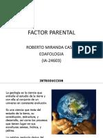 Material parental suelos