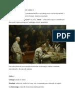1. Resumo Anatomia Humana I Generalidades