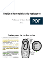 3_Tincion diferencial acido resistente