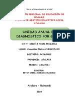 Unidad Anual Diagnostica -2020