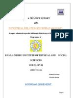 42043032-Bhel-Report-Final2