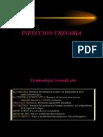Infeccion_UrinariaTema
