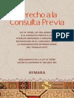Ley y Reglamento AYMARA