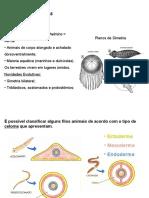 Aula de Platelmintos e Verminoses (1)