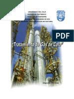 trabajo Final de Tratamiento de Gas Natural