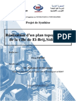 Réalisation d'un plan topographique  de la ville de El-Brij,Sidi Bouzid.