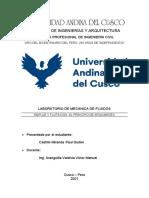 Informe n2 Laboratorio de Mecanica de Fluidos