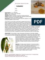 Ayurvedic Turmeric-materia Medica