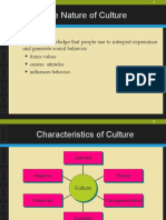 CCM meaning n dimensions of culture