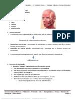 Anatomia Cabeça e Pescoço – 2º Semestre – 2ª Unidade – Aula 2 – Miologia Cabeça e Pescoço (Músculos da Mastigação) (1)