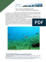 24_02_09_CP_publi_Posidonia-oceanica
