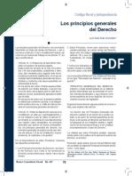 PRINCIPIOS GENERALES DE DERECHO
