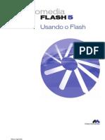 using_flash_5_br