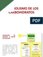 002-METABOLISMO DE LOS CARBOHIDRATOS