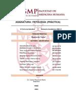 Informe semana 4 Patologia Practica