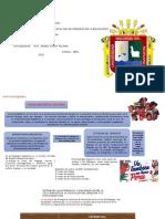 SOCIOLINGUISTICA  PERUANA