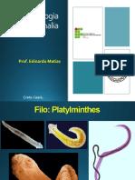 05-  Filo Platyhelminthe