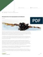 Konzentrate mit Isopropanol extrahieren _ Dabbing & Konzentrate Shop _ dabben GmbH