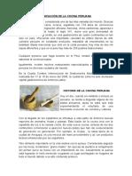 INNOVACIÓN DE LA COCINA PERUANA