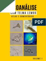 v1 Uroanálise Com Telma Lemos