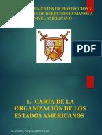 INSTRUMENTOS DE PROTECCION DE LOS DD HH NIVEL AMERICANO