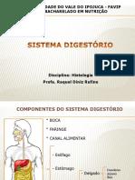Aula 11 Sistema Digestório