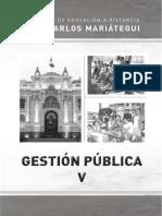 Gestion publica V