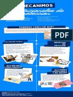 infografia mecanismos constitucionales de proteccion