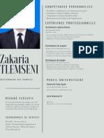 Gris Entreprise Gestionnaire de Comptes Entreprise Commercial CV
