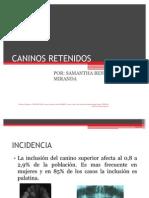 CANINOS RETENIDOS