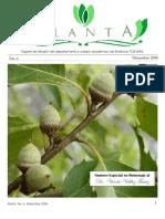 planta_no6