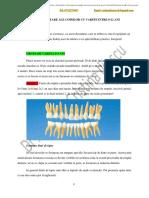 Nevoile Dentare Ale Copiilor 0 12 Ani Signed Drepturi Autor