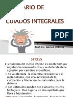 estress (2)