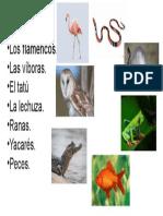 PERSONAJES DE LAS MEDIAS DE LOS FLAMENCOS