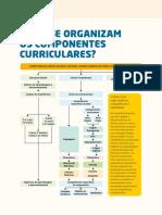 BNCC Como Se Organizam Os Componentes Curriculares