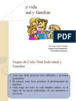 Clase_6_ciclo_de_Vida_Familiar_e_Individual_2