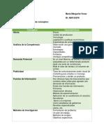 Veras Maria Esquema de Características de Conceptos Sobre Estudio de Mercado.