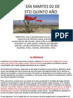 CLASE DÍA MARTES 02 DE AGOSTO QUINTO AÑO