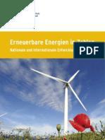 2010_Erneuerbare Energie in Zahlen