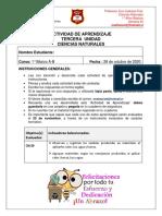 1°A-B Ciencias S44 - … (1)