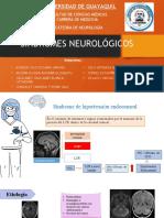 SINDROMES NEUROLOGICOS GRUPO 20