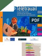 CCI du Gers - Guide teletravail 2011