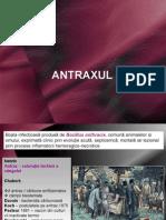 CURS ANTRAX NET