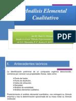 Analisis Elemental Cualitativo Omarambi 2011