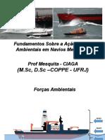 Fudamentos Sobre a Ação Forças Ambientais em Navios Mercantes