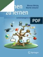 Lernen Zu Lernen Lernstrategien Wirkungsvoll Einsetzen by Werner Metzig, Martin Schuster (Auth.) (Z-lib.org)