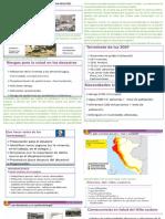 PROBLEMAS INMEDIATOS DE SALUD  SEGÚN DESASTRES